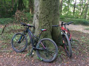 fietsen in de winter koers rijden mamazetkoers.nl