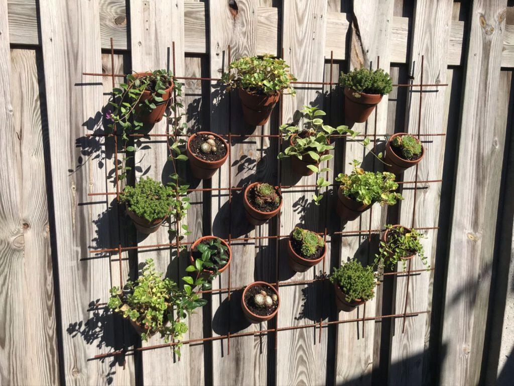 plantenrek aan de schutting mamazetkoers dit is onze achtertuin